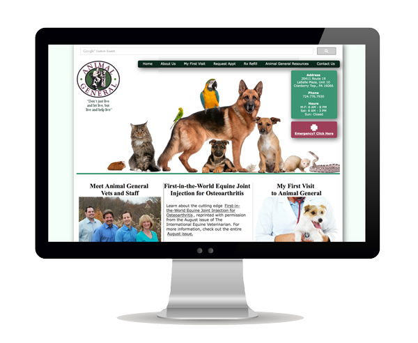 Animal General Website Design Information Picture