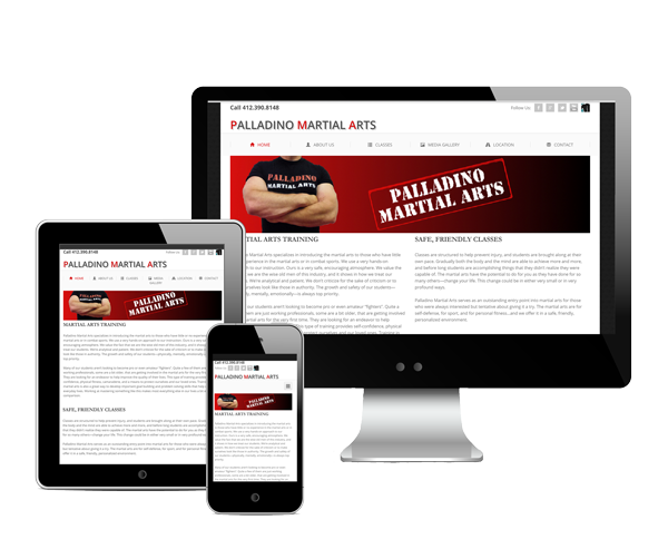 Palladino Martial Arts Website Design Information Picture